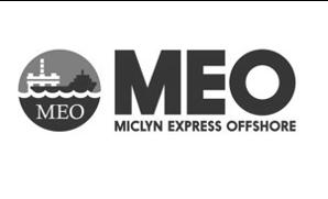 MEO Logo